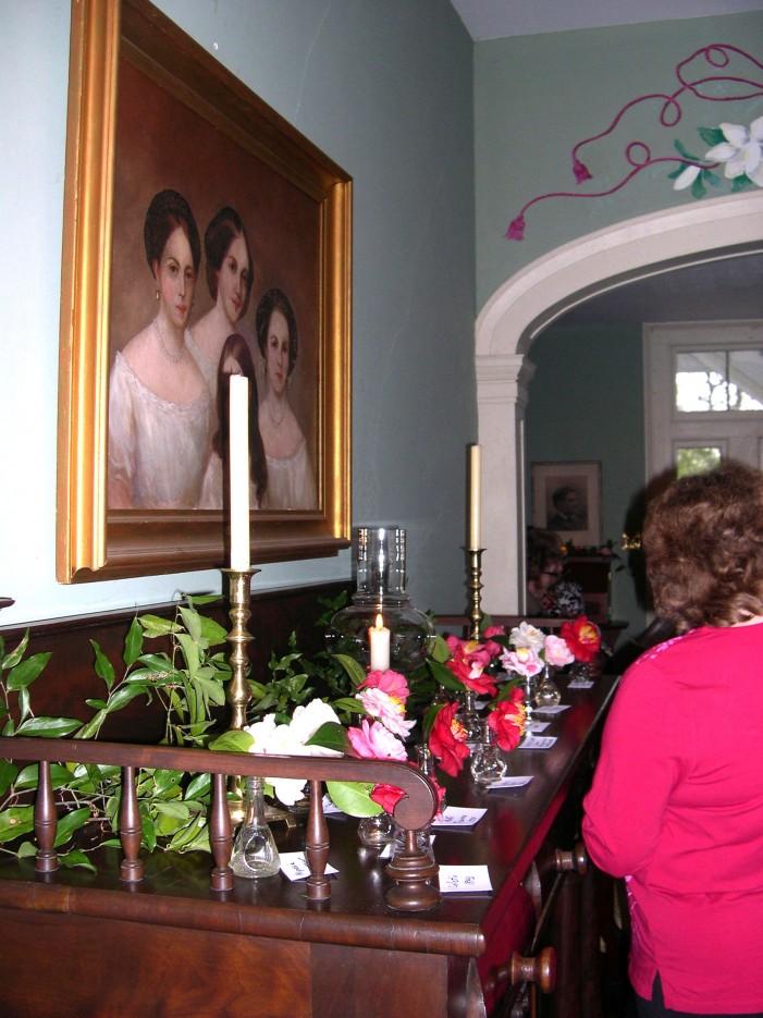 The Camellia Tea – A Fashionable Occasion