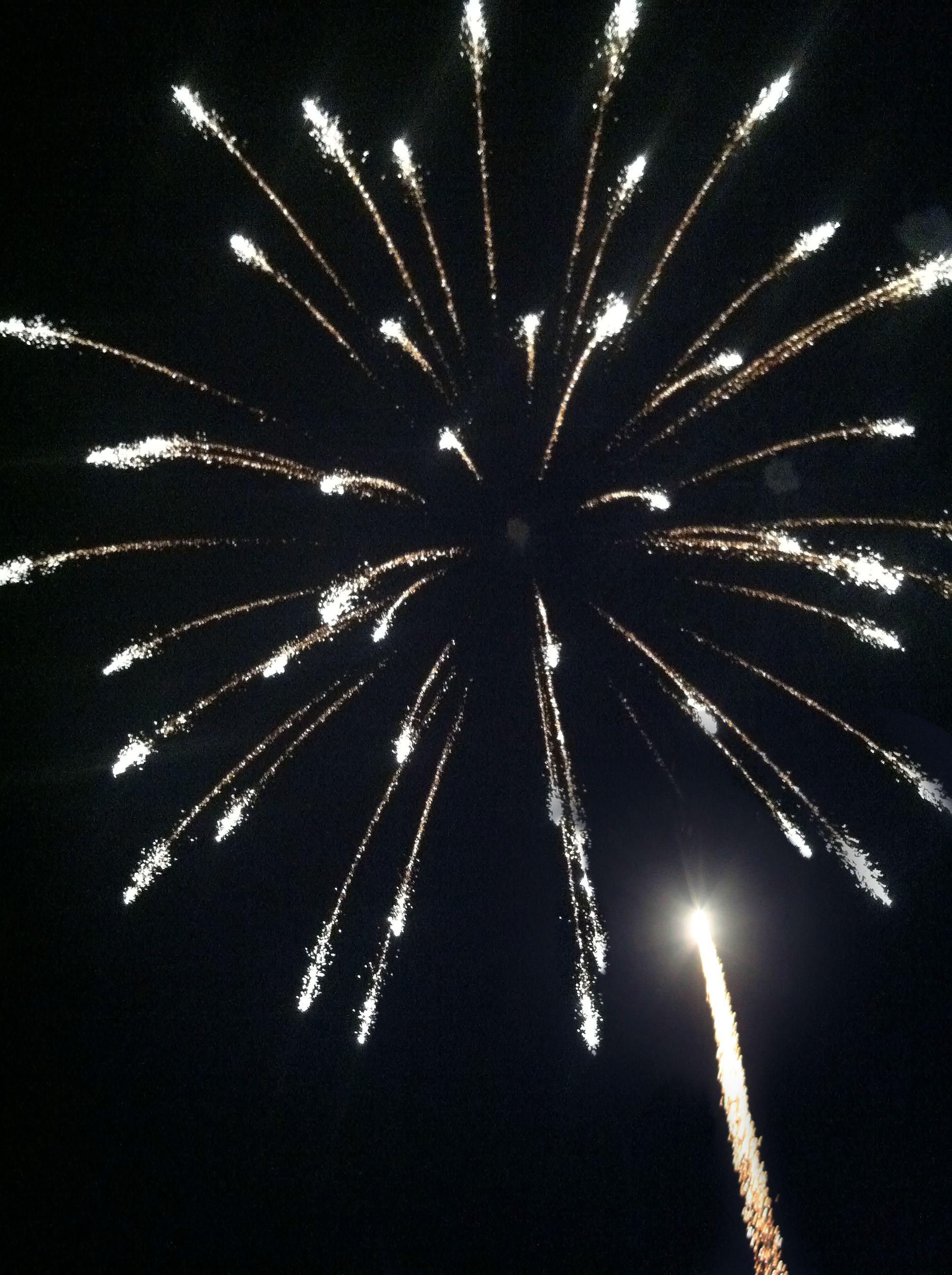NWTF-Fireworks
