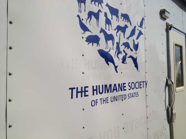 A Month Long Investigation Brings Charge of Animal Cruelty