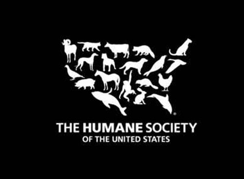Case of Rescued Animals Settled – Guilty Plea Entered