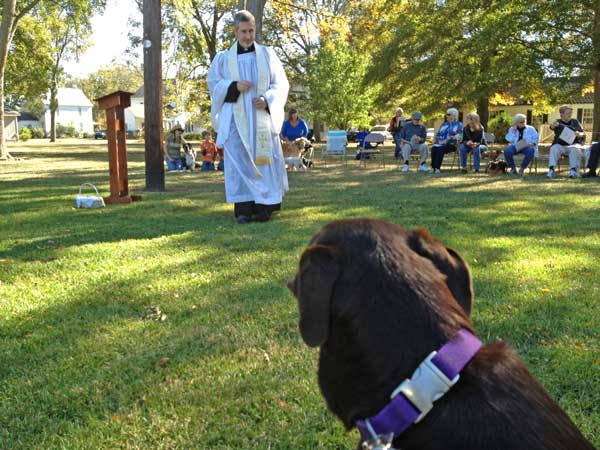 12th Annual Blessing of the Animals