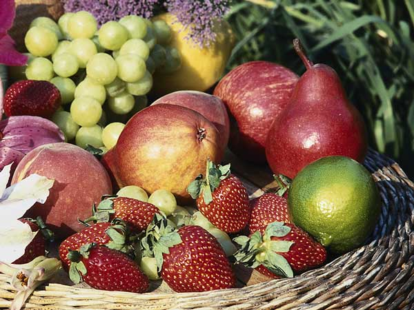 Organic Transition for Produce Farmers Workshops