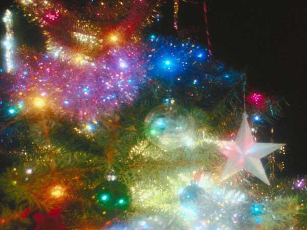 Edgefield's Annual Tree Lighting Festivities