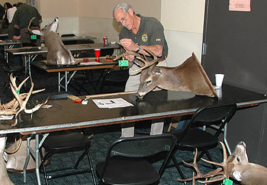 Antler Measuring Sessions Set Across South Carolina