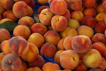 Clemson Monitors Weather Impact on Peaches
