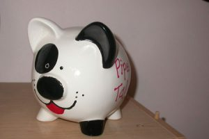 Win this Puppy Bank by entering the contest to name the most black and white items.