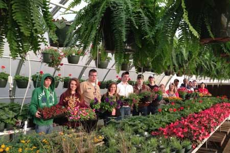 Annual Strom Thurmond FFA Plant Sale Now Open