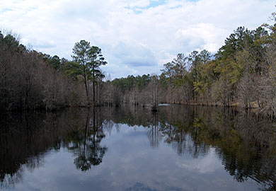 Aiken County Wildlife Area Opens to the Public Saturdays in September