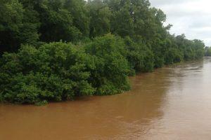 stevens-creek