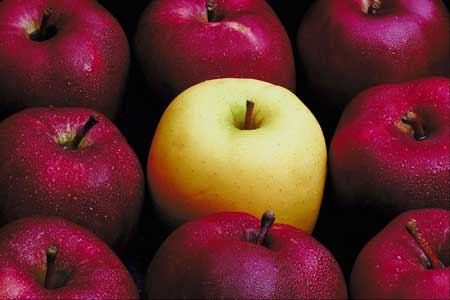 Biologist Urges Less Arsenic in Apple Juice