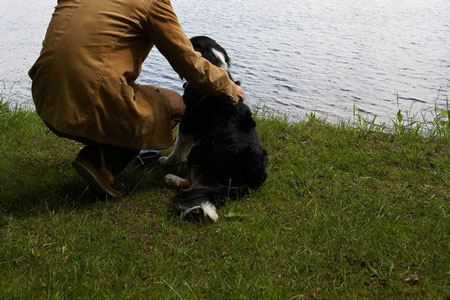Edgefield Plumber Saves Family Dog From Drowning