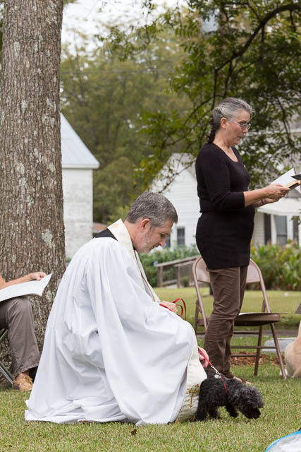 Blessing of the Animals 2013-44