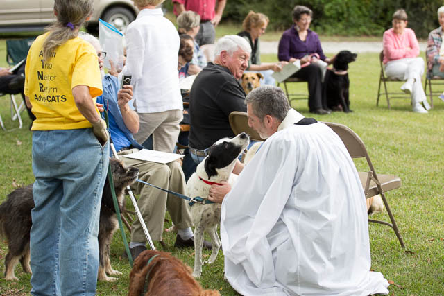 Blessing of the Animals 2013-61