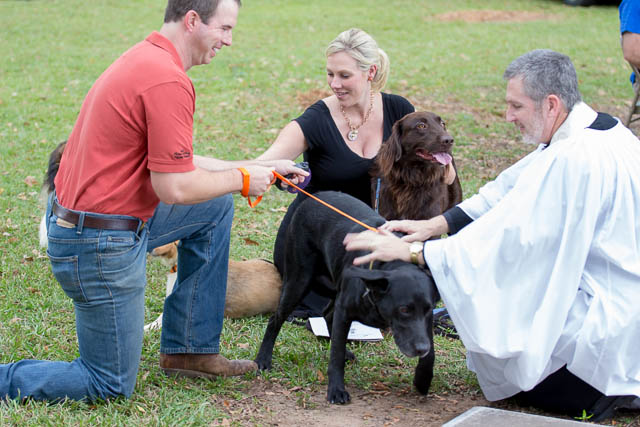 Blessing of the Animals 2013-65