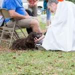 Blessing of the Animals 2013-72