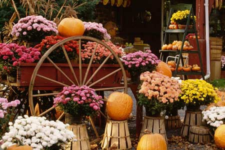 Downtown Edgefield Fall Festival – A Day of Fun for All the Family
