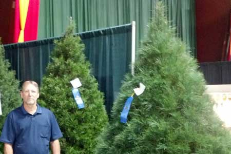 Local Christmas Trees Awarded Blue Ribbons at State Fair