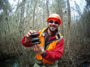 Graduate student Chris O'Bryan uses VHF radio transmitters to monitor spotted turtles in North Carolina image by: Chris O'Bryan/Clemson University
