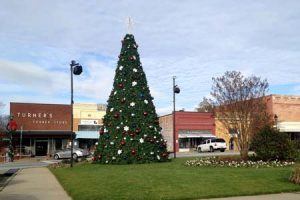 edgfield-sc-town-square-xmas-tree