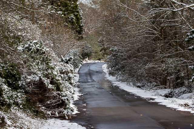 29Jan14 Snow Day-12