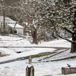 29Jan14 Snow Day-14