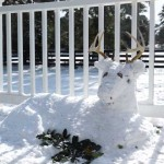 Snow buck by Stephanie & Debra Mims & Kristen Irby