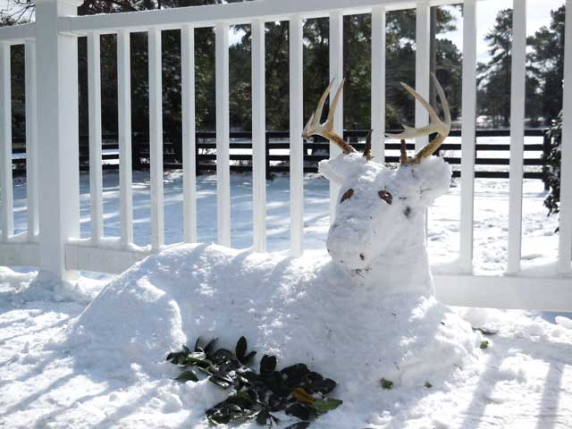 Snow-buck-by-Stephanie-Debra-MIms-Kristen-Irby