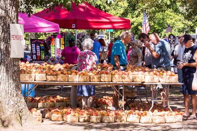 Ridge Peach Festival 2014