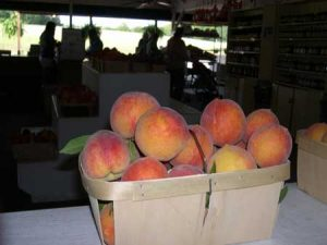 peach-basket