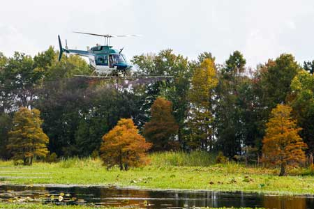 Santee Cooper to Conduct Aerial Treatments for Invasive Plants in lakes Marion and Moultrie