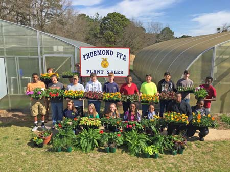 Annual FFA Plant Sale at STHS