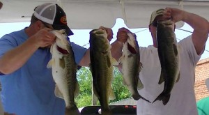 bass-fishing-tournament