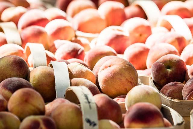 Peach Festival 2015-1
