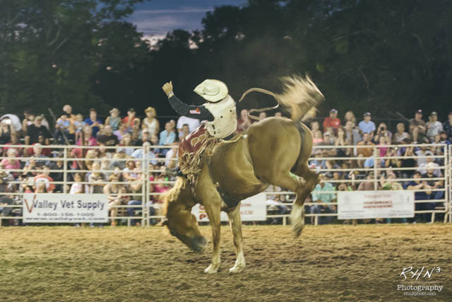 Rodeo 2015-9