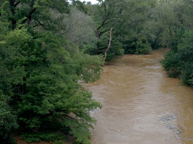 Recent Rains Push Stevens Creek Over Its Banks