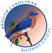 Blue Birds: Conservation Project