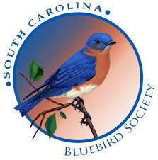 Blue Birds: Conservation Project