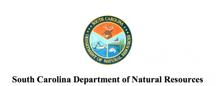 SCDNR declares temporary hunting closures in portions of Georgetown, Marion, Horry Counties